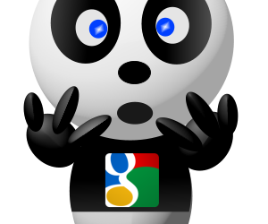 Mise à jour Google Panda