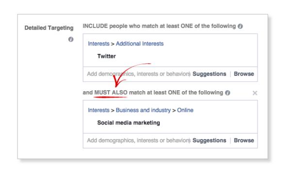 Facebook-option-ciblage