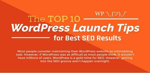 Infographie : conseils pour une meilleure utilisation de WordPress